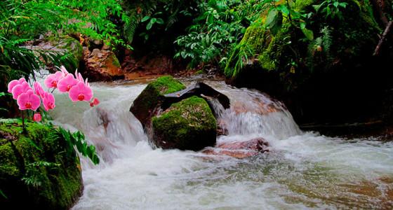 cascadas-del-rio-tirol