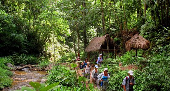 turistas-caminando-por-el-sendero-a-la-caminata-tirol